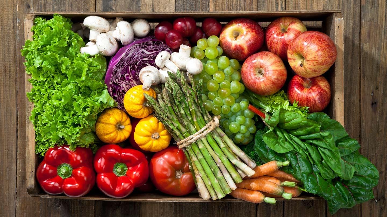vegan diet foods