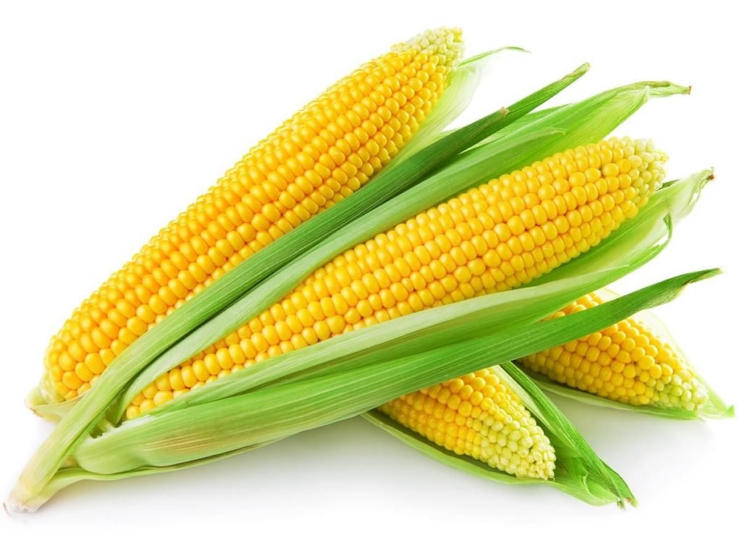 Corn Nutritional Value Nutrition Facts Is There Any Health Benefits
