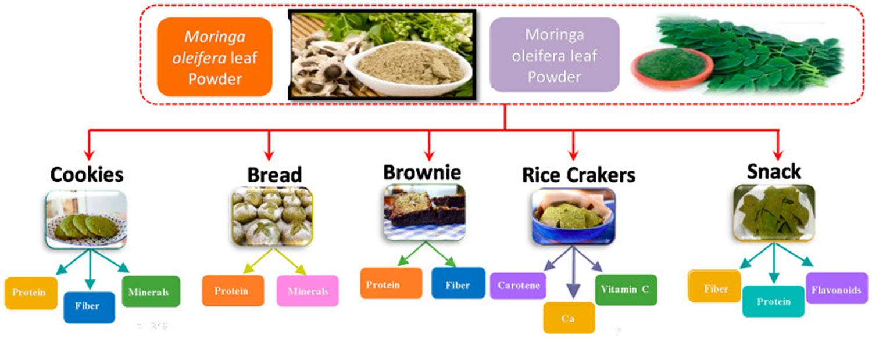 Moringa oleifera use in bakery industry