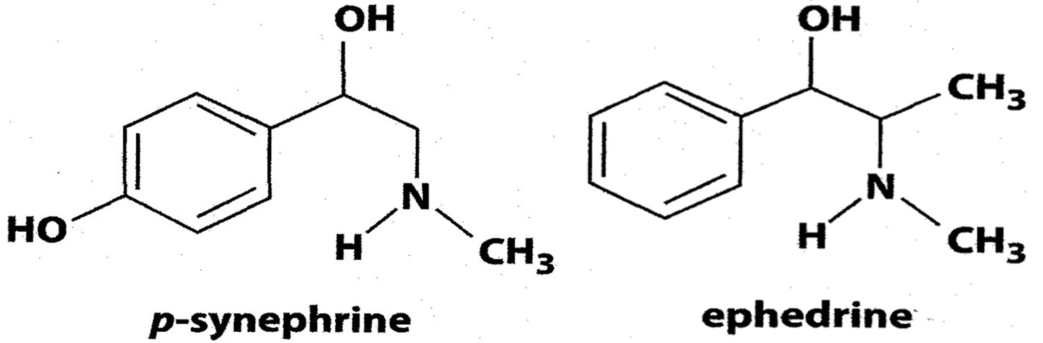 Structures of synephrine and ephedrine