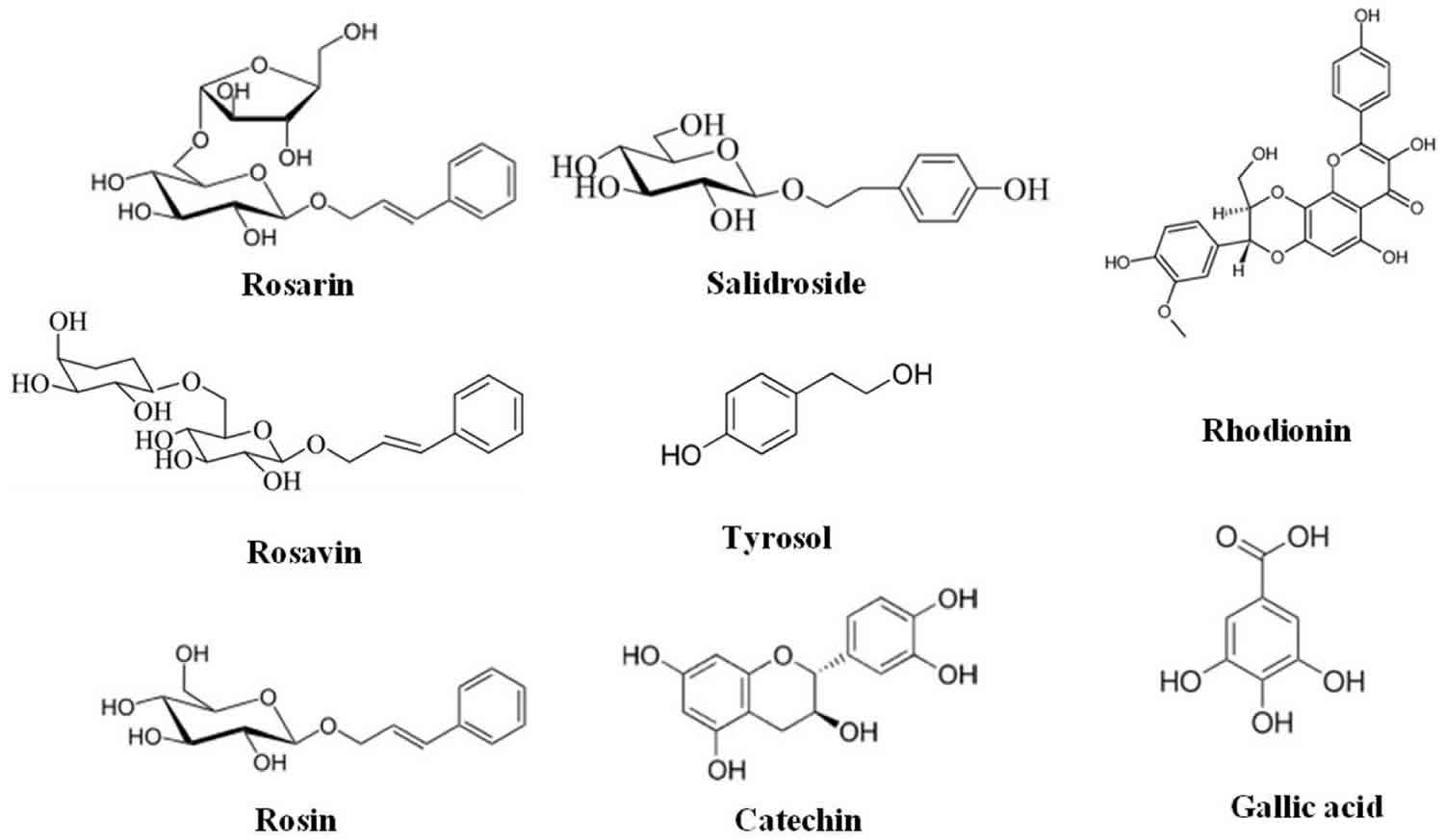 Rhodiola rosea extracts bioactive compounds