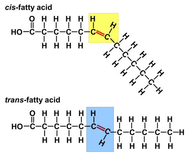 trans fatty acids structure
